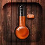 Цифровой Термометр на пк