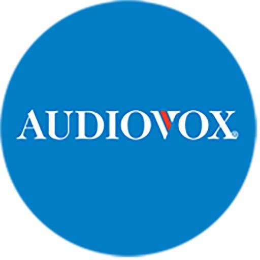 Audiovox Headrest