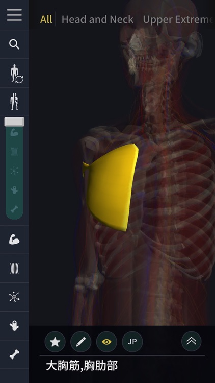 3D motion anatomy teamLabBody screenshot-4