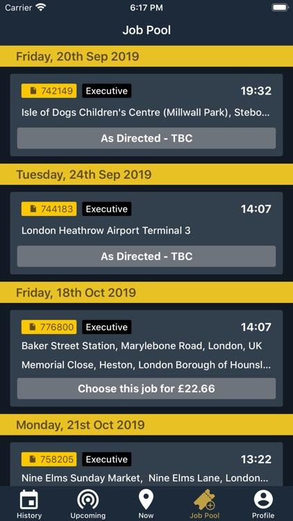 Airport Transport Driver screenshot-4