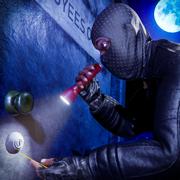 盗贼抢劫大师模拟器2020