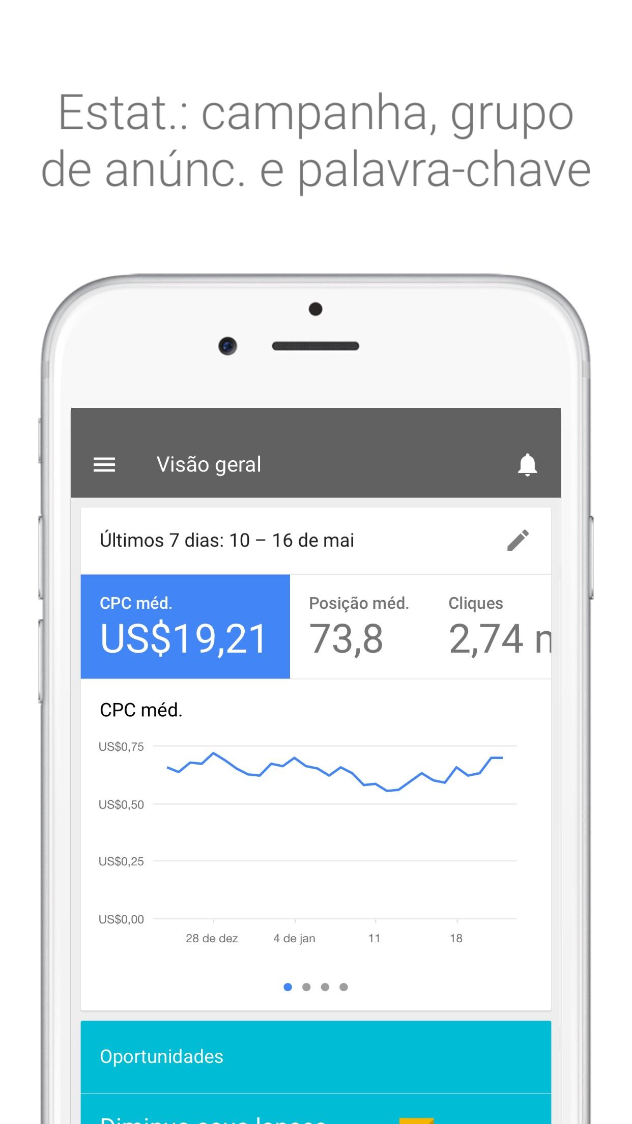 Screenshot do app Google Ads