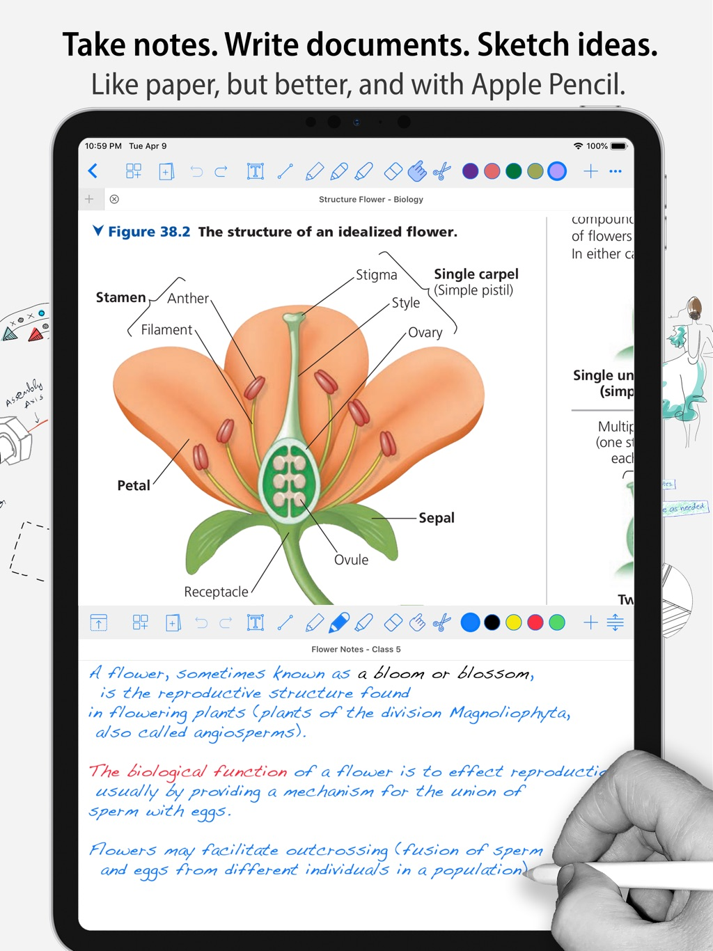 Notes Writer Pro- Sync & Share | AppFollow