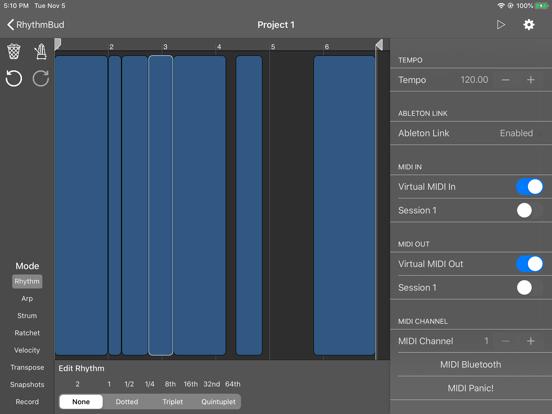 RhythmBud - AUv3 MIDI FX screenshot 10