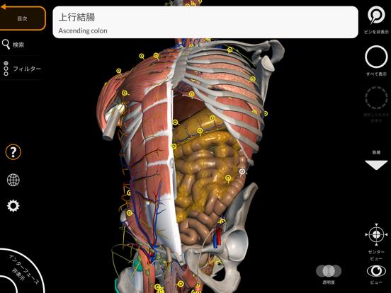 解剖学 - 3Dアトラスのおすすめ画像2