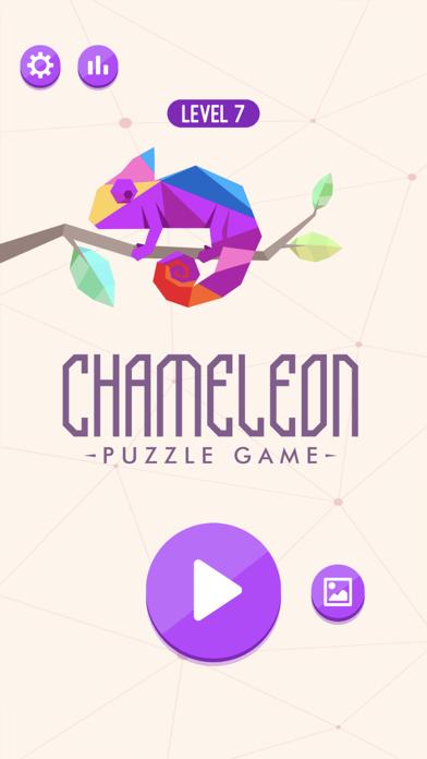 Chameleon Puzzle Game screenshot 3