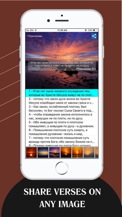 Russian Bible - Библия screenshot-5