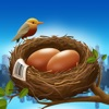 Nest Egg - Inventory In Cloud