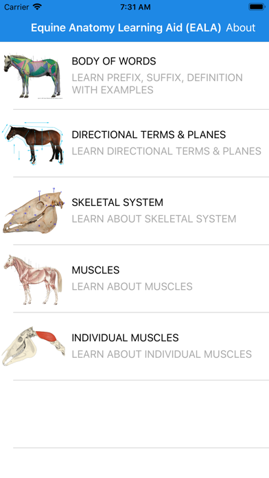 Equine Anatomy Learning Aid screenshot 1
