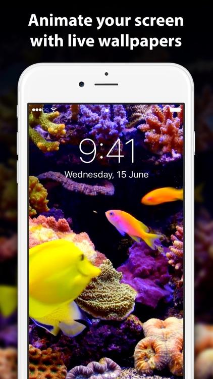 Live Wallpaper: 4k Backgrounds screenshot-0