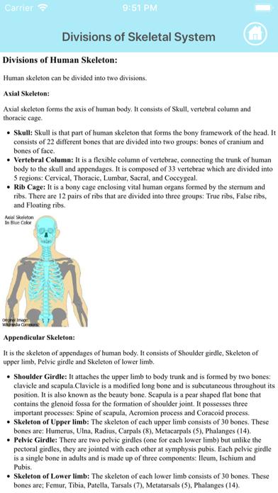 Learn Skeletal System Screenshot