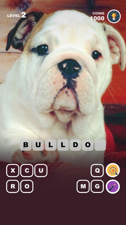 Dog Breed Training: Pet Trivia
