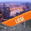 Liege City Travel Guide