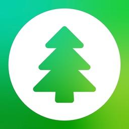 Evergreen – Finance Manager