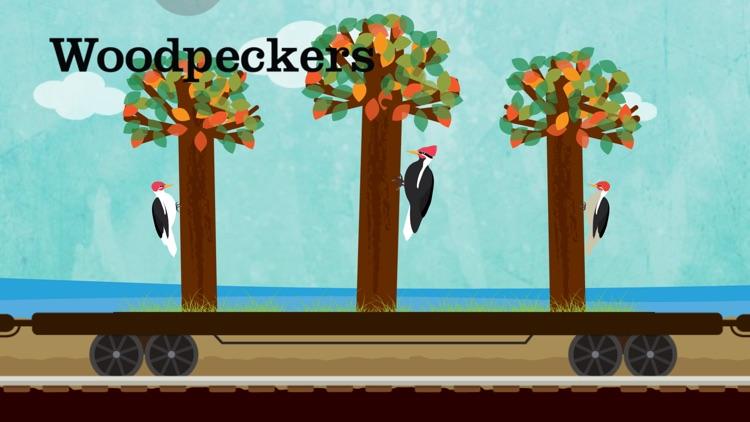 Peek-a-Zoo Train screenshot-3