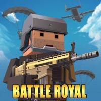 Codes for Pixel Battle Royale Hack