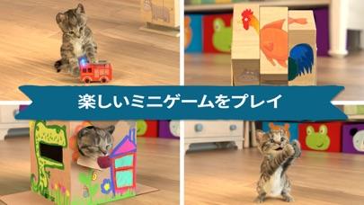Little Kitten 小さな子猫 - お気に入りの猫のおすすめ画像2