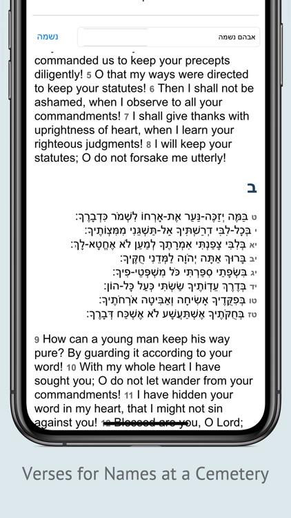 Tehilim תהלים Tehillim Psalms screenshot-3