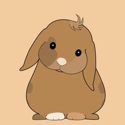 Brulee Bunny