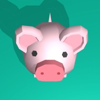 Codes for Pig Home Hack