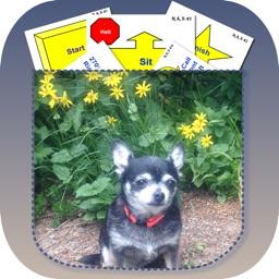 Pocket Rally Dog Obedience