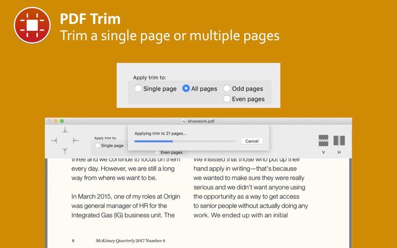 PDF Trim скриншот программы 3