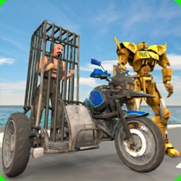Sidecar Motorcycle Simulator