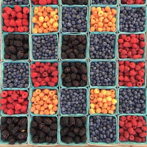 Fruits Learner