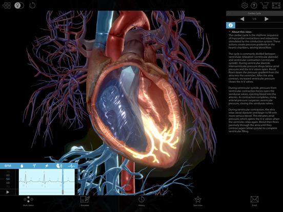 Physiology & Pathology Screenshots