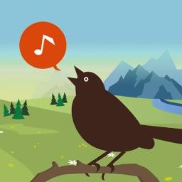 Chirp! Bird Songs Canada