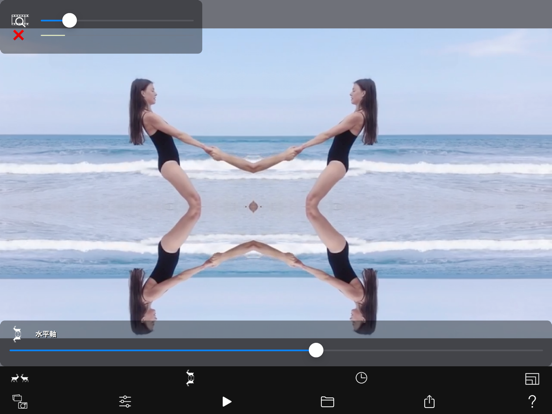 Symmetry Video Camera screenshot 6