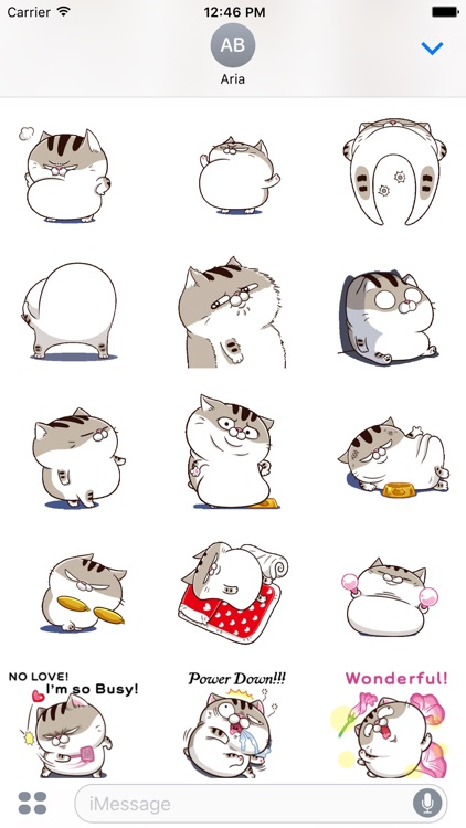 New Version Animated Ami Cat
