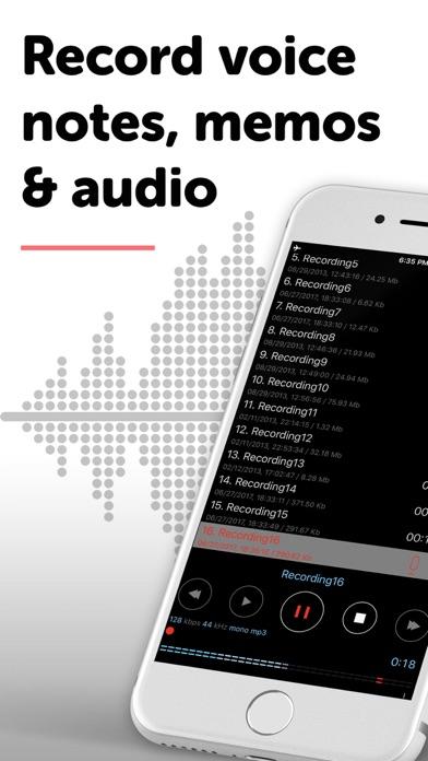 Dictaphone - Audio Recorder på PC