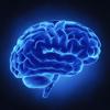 Brain Kick