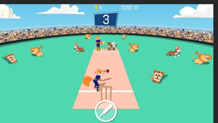 Quicket Cricket