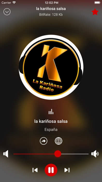 Salsa Music Radio App screenshot-3