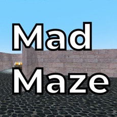 Activities of Mad Maze z