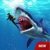 愤怒 鲨鱼 攻击 鲨鱼 游戏