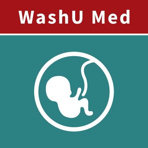 WashU Med OBGYN Guide