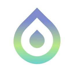 Flow Yoga - Basic For Beginner
