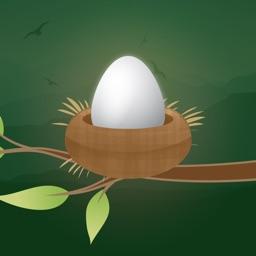 Easter Egg Tap To Jump Basket