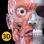 Anatomie - 3D Atlas