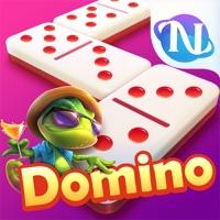 Higgs Domino Gaple Qiu Qiu On Pc Download Free For Windows 7 8 10 Version