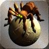 蜘蛛大作戰