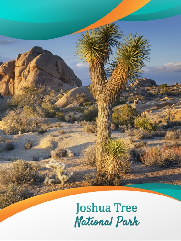 Joshua Tree National Park - US screenshot 6
