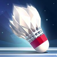Codes for Badminton League Hack