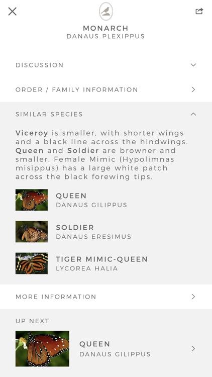 Fieldstone Guide: Butterflies screenshot-5