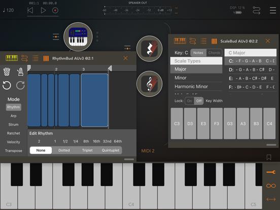 RhythmBud - AUv3 MIDI FX screenshot 7