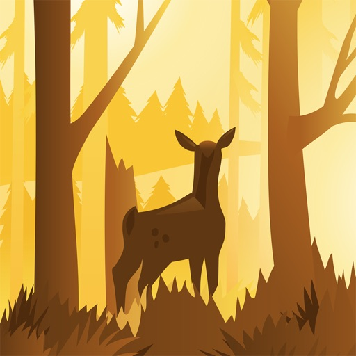 Wildfulness 2 - Natuurgeluiden