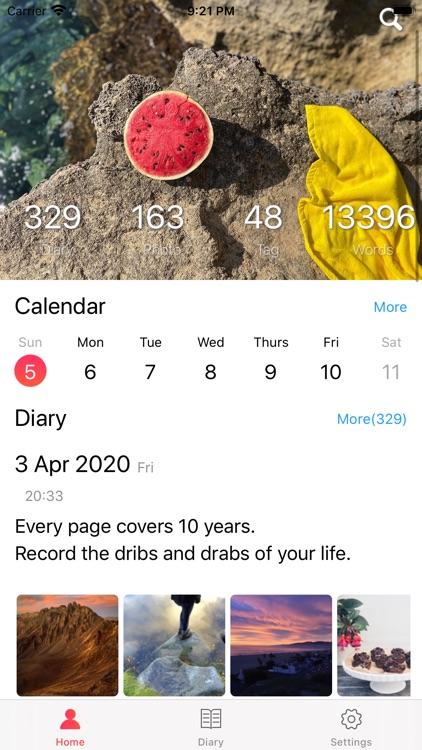 TenYear Diary - journal & memo